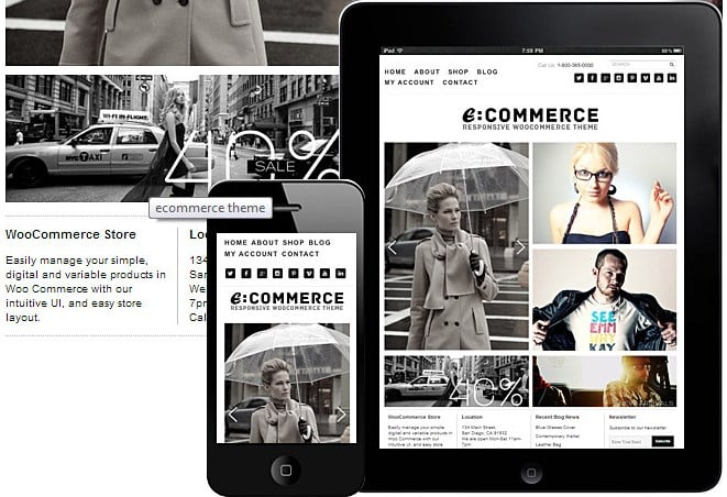 Dessign ECommerce WooCommerce Themes