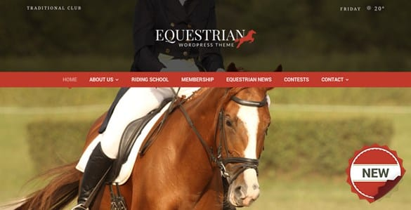 Equestrian - Horses & Stables WordPress Theme