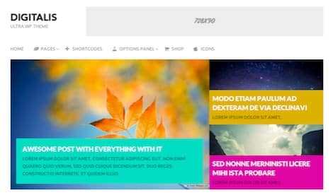 MyThemeShop Digitalis WordPress Theme