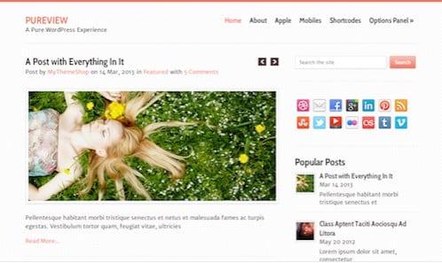 MyThemeShop Pureview WordPress Theme