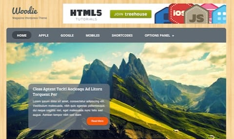 MyThemeShop Woodie WordPress Theme