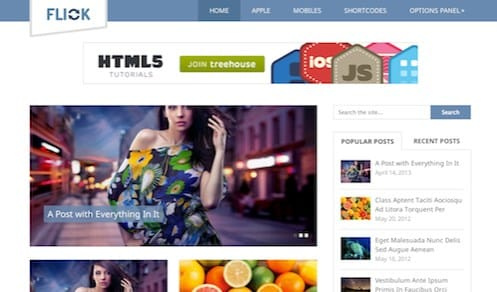 MyThemeShop Flick WordPress Theme