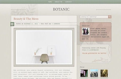 CSS Igniter Botanic WordPress Theme