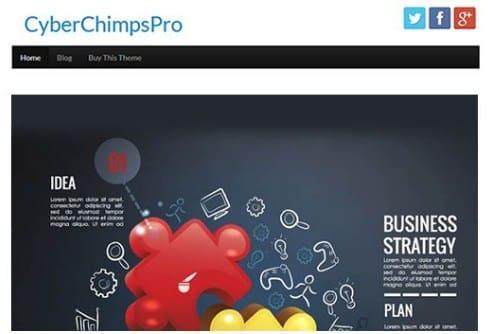 CyberChimps CyberChimps Pro WordPress Theme