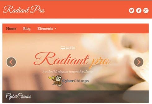 CyberChimps Radiant Pro WordPress Theme